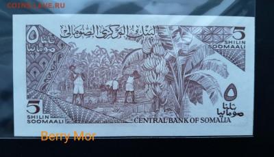 СОМАЛИ 5 шиллингов 1986г., ДО 17.01. - Сомали 5 шиллингов 1986г., В.(1)(1)