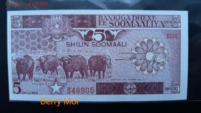 СОМАЛИ 5 шиллингов 1986г., ДО 17.01. - Сомали 5 шиллингов 1986г., А.(1)(1)