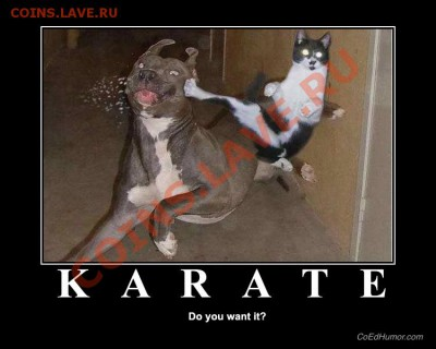 юмор - karate