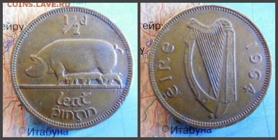 Ирландия ½ пенни, 1964 - 14