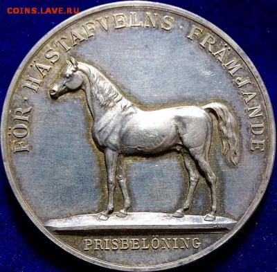 Рис. 9. Медаль «Серебряная лошадь» [2] - Medal_Horse
