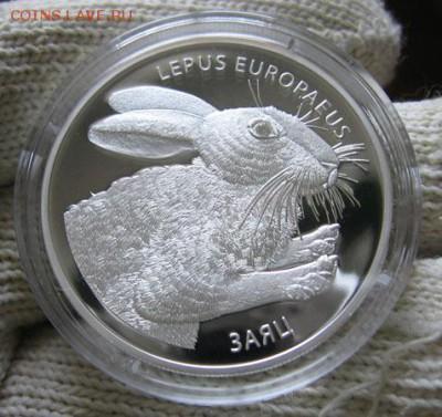 Беларусь 20 рублей Заяц до 21.04 22.00 - 1