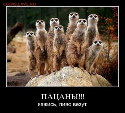 делает - прямо сейчас !!! - kKb8AESoV_g