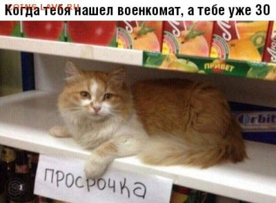 юмор - b_2HkqaYmJM