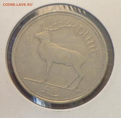 ИРЛАНДИЯ - 1 фунт ОЛЕНЬ до 11.06, 22.00 - Ирландия 1 фунт Олень_1.JPG