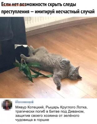 юмор - m_4B6BtJKuc