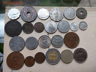 Монеты мира ФИКС (обновление) до 04.07 - IMAG2106