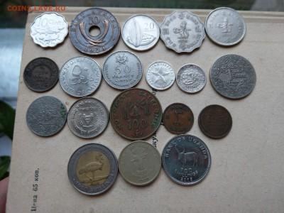 Монеты мира ФИКС (обновление) до 04.07 - IMAG2111