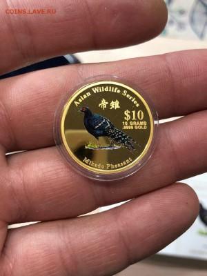 ЗОЛОТО - Острова Кука - 10 долларов 2001 - 10 гр. - 12.07.19 - UcuN-4OS0s4