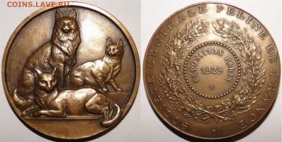 Кошки на монетах - мед-2-3