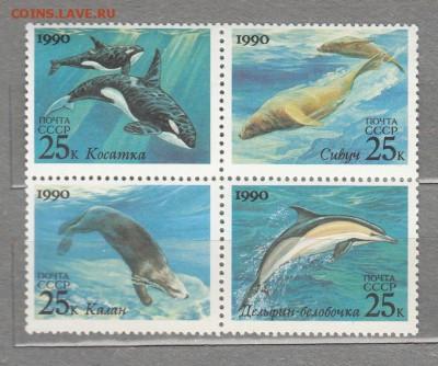 СССР 1990 касатки 4м до 27 07 - 16