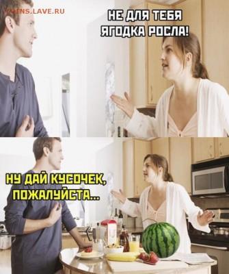 Сколько стоят арбузы в вашем городе? - 6l-9nGGUnwA
