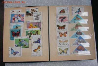 Альбом для марок.12 листов до   14.08.19. 22-00 - DSC06028.JPG