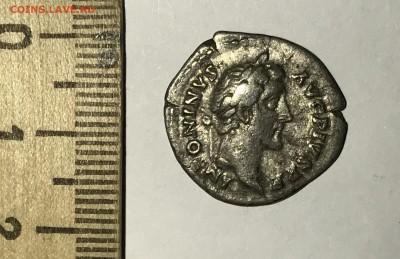 Римские Денарии и Антонинианы на определение и оценку - IMG_3558.JPG