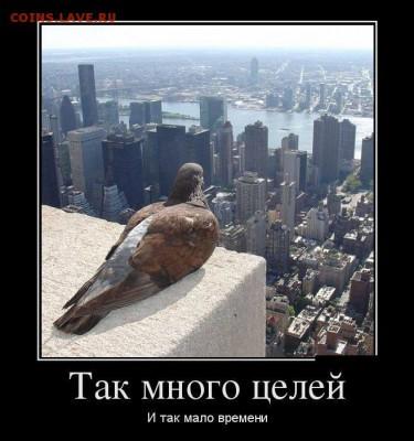 юмор - dDp4wrtPlyI