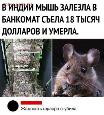 юмор - uq1FFJbHTnY