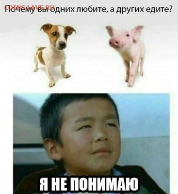 юмор - NyL4okz1TEw