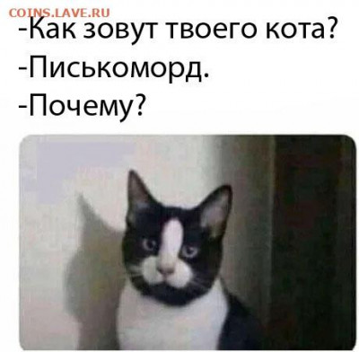юмор - ydjKHPo2HM4