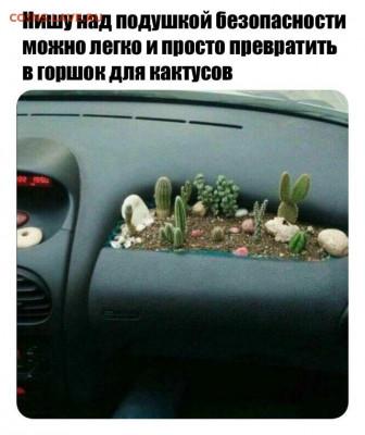 юмор - joZvq9BogDE