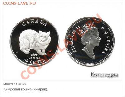 Кошки на монетах - f_19496969