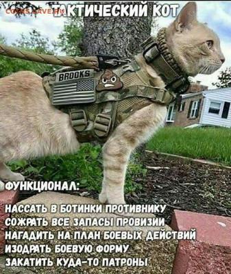 юмор - MWdXhRIv_BY
