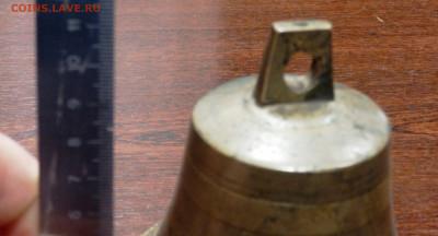 6 колокольчиков оценка - PC260416.JPG