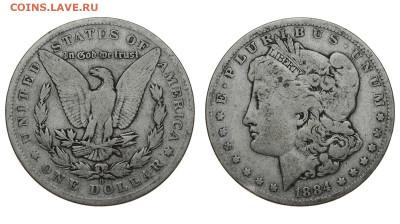 США. 1 доллар 1884 г. Морган. До 28.03.20. - DSH_7772.JPG
