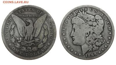 США. 1 доллар 1886 г. Морган. До 28.03.20. - DSH_7776.JPG