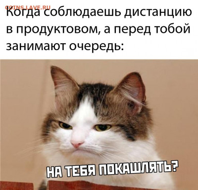 юмор - xydx3BPoYlU