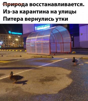 юмор - jQIZBjvoRs0