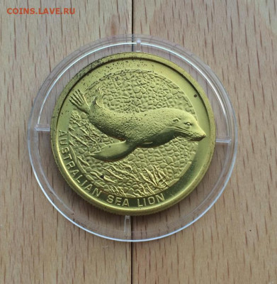 Австралия 1$ доллар 2008 Австралийский морской лев Животные - avstralija_1_dollar_2008_avstralijskij_morskoj_lev_zhivotnye_fauna