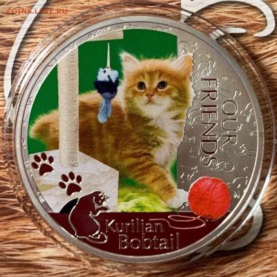Кошки на монетах - DFYFdgozjwk