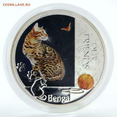 Кошки на монетах - Бенгал