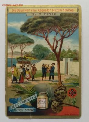 Рекламная карточка.Мясной экстракт.Бельгия 1901 г.до 29.05. - IMG_20200522_165728