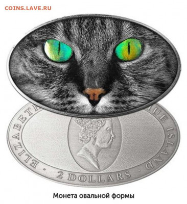 Кошки на монетах - qy-PxzoyHP4