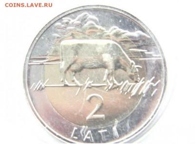 Самая красивая биметаллическая монета! - Новый точечный рисунок11