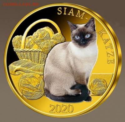Кошки на монетах - 02