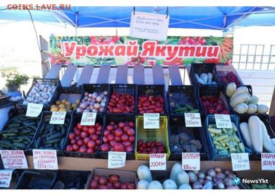 Цены на рынке.Якутск. - 20200716_123906