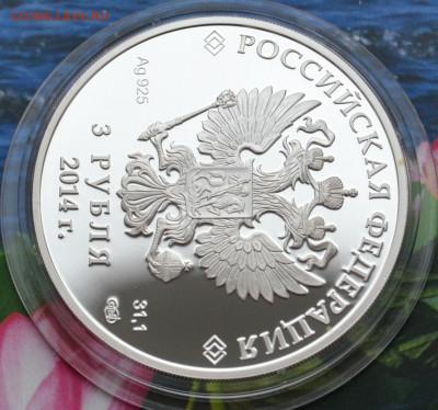 3 рубля Сочи 2014 Горные лыжи - DSC_0043.JPG