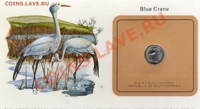 Птицы мира ЮАР 5 центов 1980 Журавль Стэнли до 29.09.11 22ч - img029