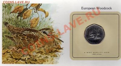 Птицы мира Ирландия 50 пенсов 1979 Вальдшнеп до 29.09.11 22ч - img051