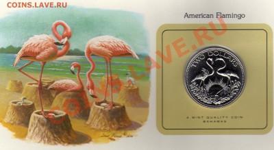 Птицы мира Багамы 2$ 1979 Фламинго до 29.09.11 22 - img059