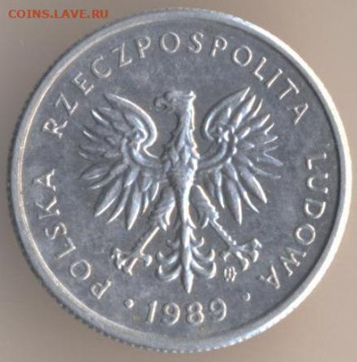 Польша - 36