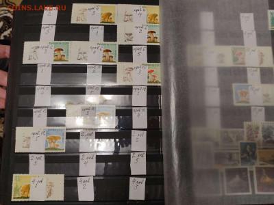 Коллекция марок раннего СССР, на оценку. - IMG_20201125_193949_thumb