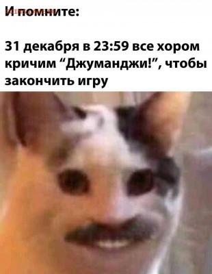 юмор - gMTE8iQ7kZk