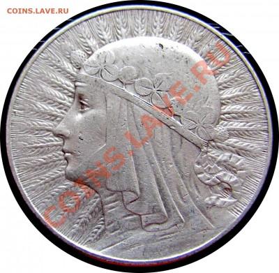 D28 Польша 5 зл. 1933 Ядвига (серебро) до 07.10 в 22° - D28 Yadwiga 5 1933_1