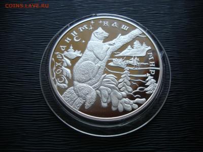25 рублей 1997г. Серебро. СНМ. Соболь. До 20.01 - соболь (2).JPG
