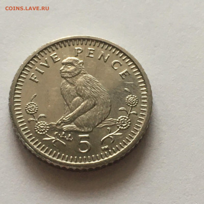 Гибралтар 5 пенсов, 2003 г - image-14-01-21-12-12-1