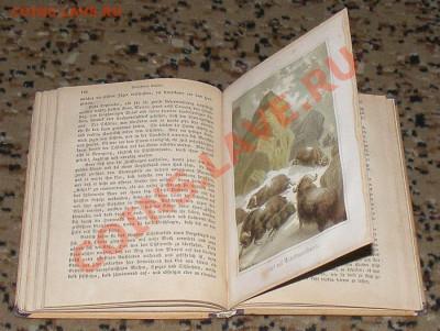 Книги иностранные (старые) - DSCF1379