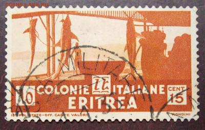 итальянские колонии на оценку - DSCN0383 (2).JPG